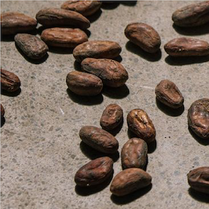 chocolate beans image